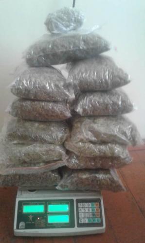 Госпогранслужба Азербайджана изъяла из незаконного оборота около 19 кг наркотиков - ФОТО