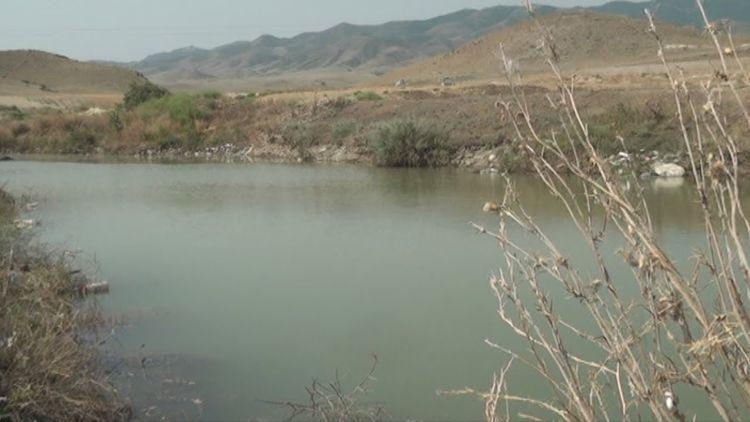 В Гяндже женщина утонула в озере